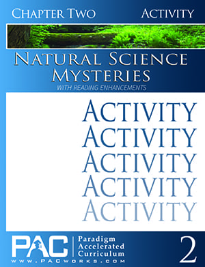 Natural Science Mysteries Chapter 2 Activities from Paradigm Accelerated Curriculum